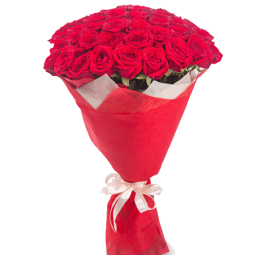 51_red_roses-1.png